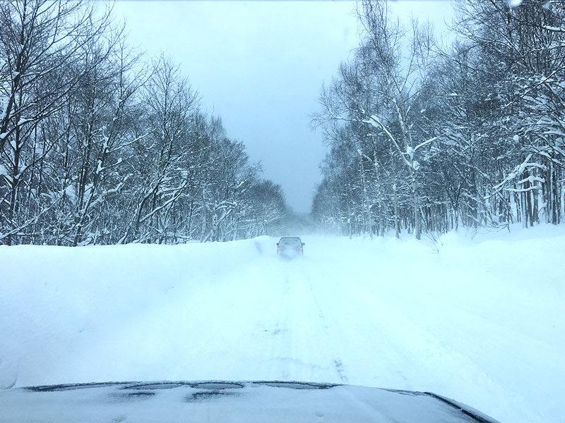 キロロの道